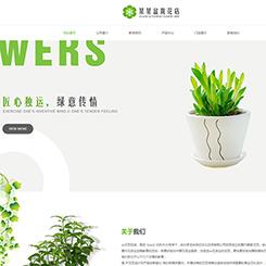 盆栽花店网站